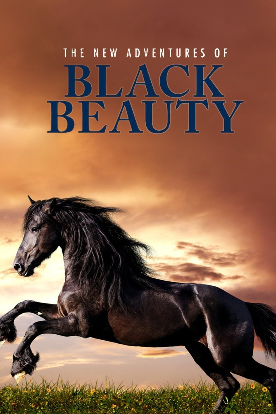 1992 The New Adventures of Black Beauty