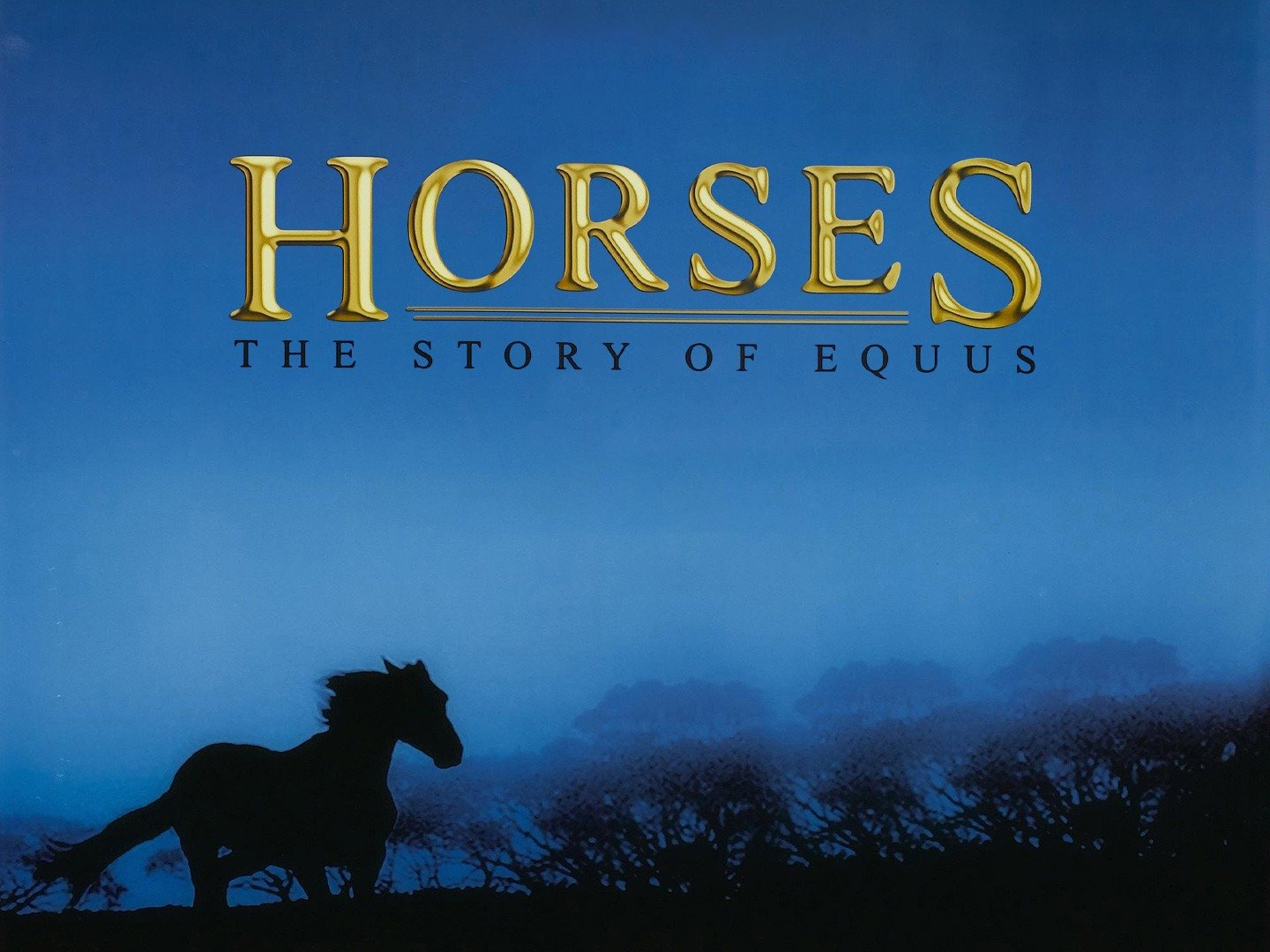 2001 Horses The Story of Equus (1)