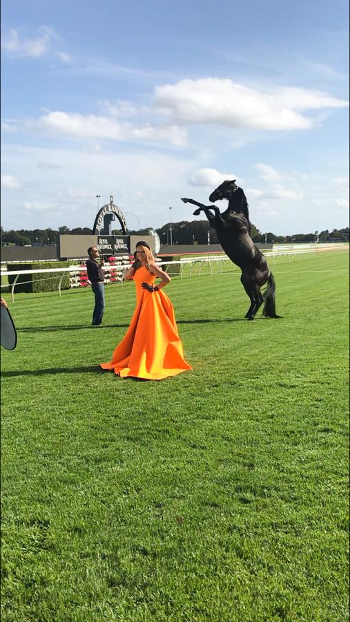 Cody-Rawson-Harris-Horse-Training-06