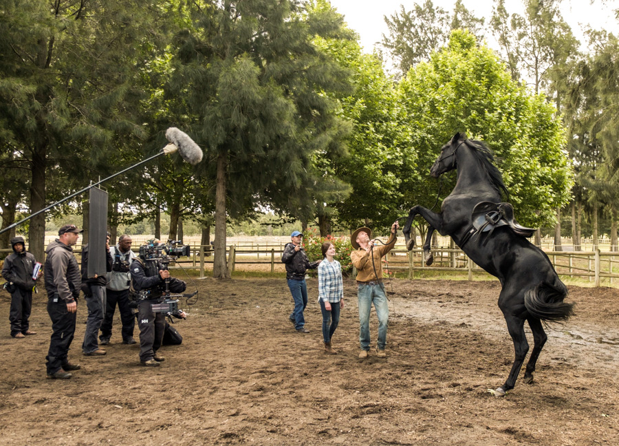Cody-Rawson-Harris-Horse-Training-08