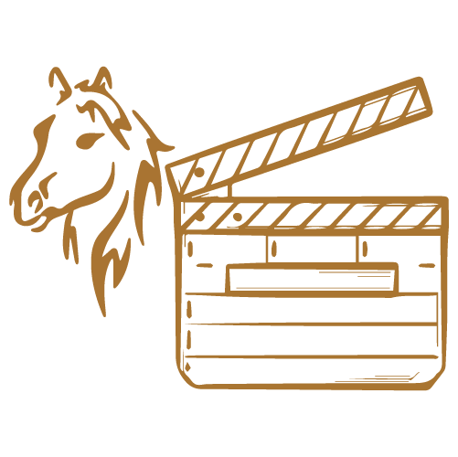 Training animals for film and TV